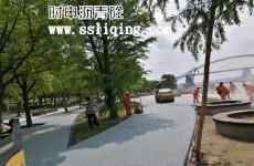 黄浦江两岸滨江开放空间彩色沥青路面效果图